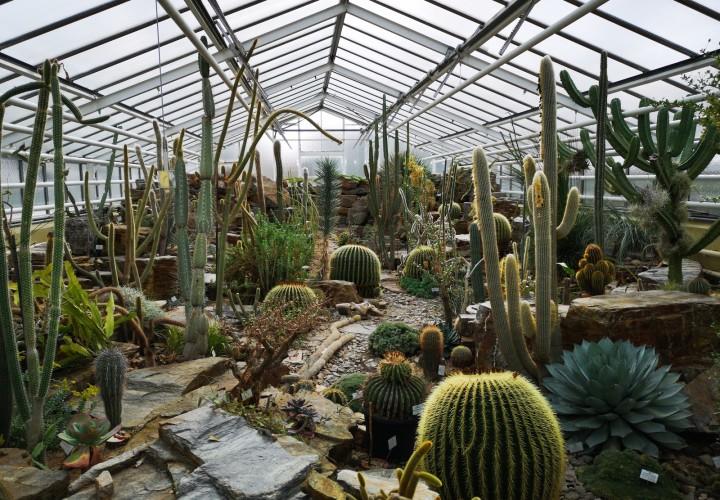 Botanischer Garten München-Nymphenburg – Neuhausen-Nymphenburg Bild