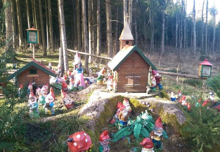 Zwergerlwald – Erding, Taufkirchen (Vils) Bild