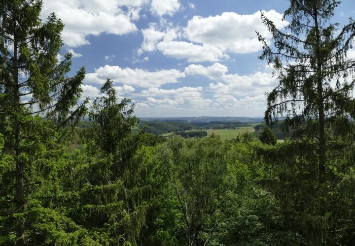 Panarbora – Waldbröl, Oberbergischer Kreis Bild